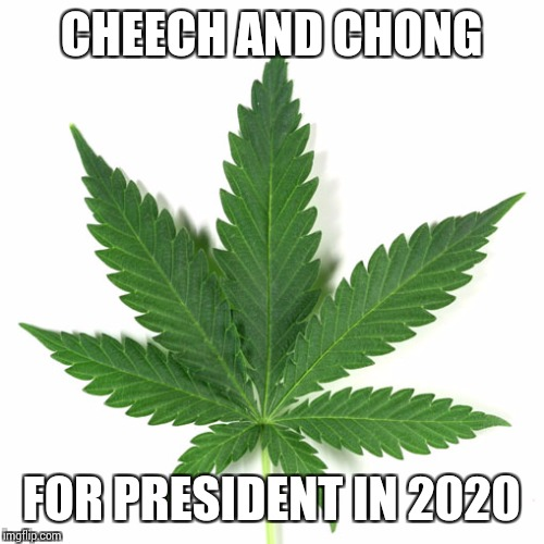 Marijuana leaf | CHEECH AND CHONG FOR PRESIDENT IN 2020 | image tagged in marijuana leaf | made w/ Imgflip meme maker