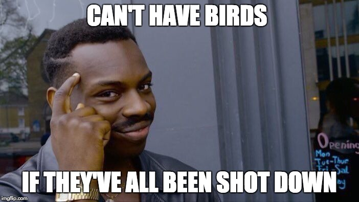 Roll Safe Think About It Meme | CAN'T HAVE BIRDS IF THEY'VE ALL BEEN SHOT DOWN | image tagged in memes,roll safe think about it | made w/ Imgflip meme maker