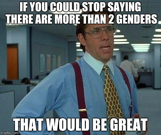 That Would Be Great Meme | IF YOU COULD STOP SAYING THERE ARE MORE THAN 2 GENDERS THAT WOULD BE GREAT | image tagged in memes,that would be great | made w/ Imgflip meme maker