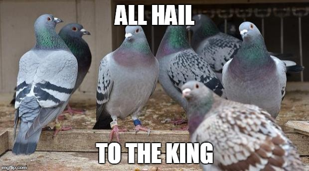 ALL HAIL TO THE KING | made w/ Imgflip meme maker