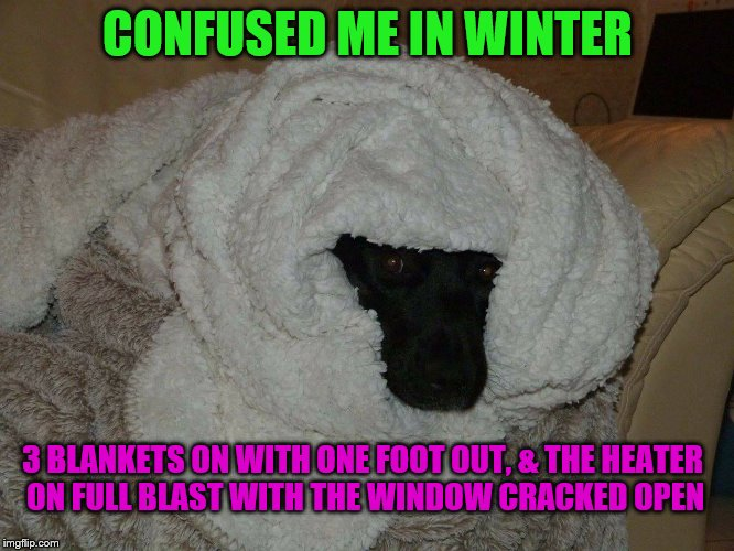 CONFUSED ME IN WINTER 3 BLANKETS ON WITH ONE FOOT OUT, & THE HEATER ON FULL BLAST WITH THE WINDOW CRACKED OPEN | image tagged in winter | made w/ Imgflip meme maker
