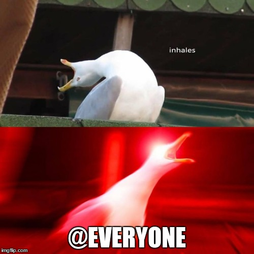@EVERYONE | image tagged in inhaling bird meme | made w/ Imgflip meme maker