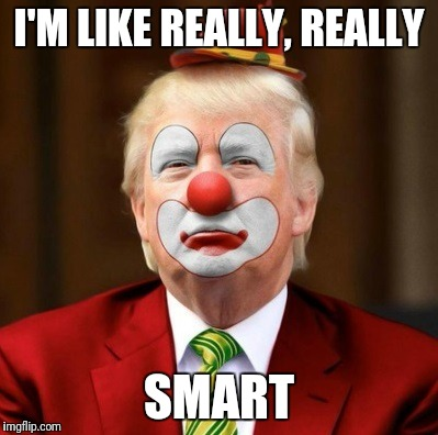I'M LIKE REALLY, REALLY SMART | image tagged in clown | made w/ Imgflip meme maker