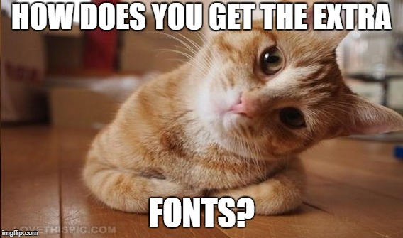 HOW?!?!?! | HOW DOES YOU GET THE EXTRA FONTS? | image tagged in new fonts,imgflip,how,confused cat | made w/ Imgflip meme maker