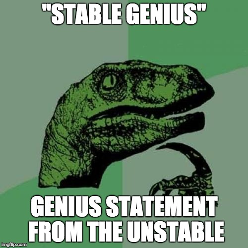 "Vacuous | ""STABLE GENIUS"" GENIUS STATEMENT FROM THE UNSTABLE 