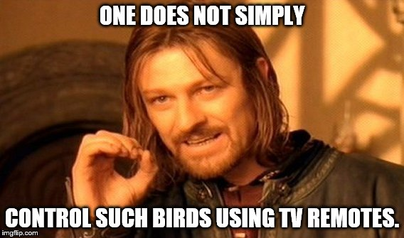 One Does Not Simply Meme | ONE DOES NOT SIMPLY CONTROL SUCH BIRDS USING TV REMOTES. | image tagged in memes,one does not simply | made w/ Imgflip meme maker