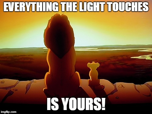 Lion King Meme | EVERYTHING THE LIGHT TOUCHES IS YOURS! | image tagged in memes,lion king | made w/ Imgflip meme maker