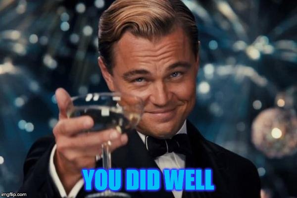 Leonardo Dicaprio Cheers Meme | YOU DID WELL | image tagged in memes,leonardo dicaprio cheers | made w/ Imgflip meme maker