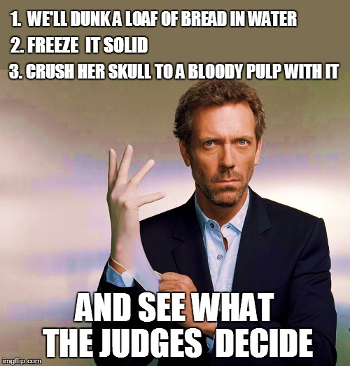 1.  WE'LL DUNK A LOAF OF BREAD IN WATER AND SEE WHAT THE JUDGES  DECIDE 2. FREEZE  IT SOLID 3. CRUSH HER SKULL TO A BLOODY PULP WITH IT | made w/ Imgflip meme maker