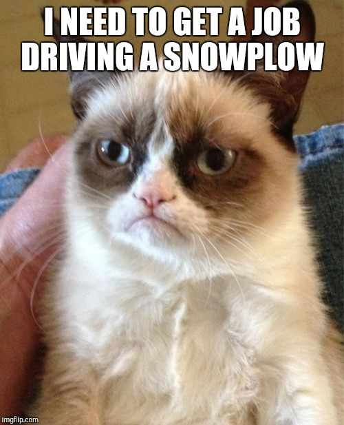 Grumpy Cat Meme | I NEED TO GET A JOB DRIVING A SNOWPLOW | image tagged in memes,grumpy cat | made w/ Imgflip meme maker