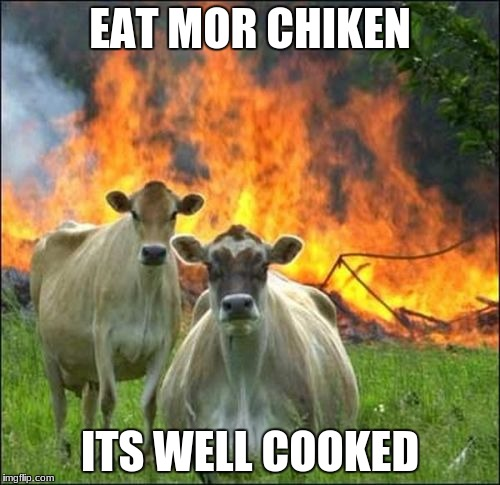 Chik-fil-a new advertisement | EAT MOR CHIKEN ITS WELL COOKED | image tagged in memes,evil cows,chicken,chick fil a | made w/ Imgflip meme maker