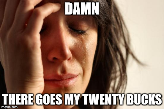 First World Problems Meme | DAMN THERE GOES MY TWENTY BUCKS | image tagged in memes,first world problems | made w/ Imgflip meme maker