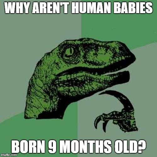 Philosoraptor Meme | WHY AREN'T HUMAN BABIES BORN 9 MONTHS OLD? | image tagged in memes,philosoraptor | made w/ Imgflip meme maker