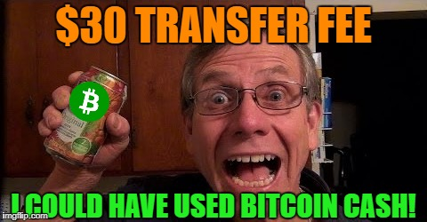 I could have used Bitcoin Cash | $30 TRANSFER FEE I COULD HAVE USED BITCOIN CASH! | image tagged in bitcoin,bitcoin cash | made w/ Imgflip meme maker