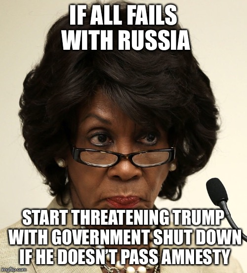 Maxine waters | IF ALL FAILS WITH RUSSIA START THREATENING TRUMP WITH GOVERNMENT SHUT DOWN IF HE DOESN'T PASS AMNESTY | image tagged in maxine waters,democratic party,liberal logic,illegal immigration | made w/ Imgflip meme maker