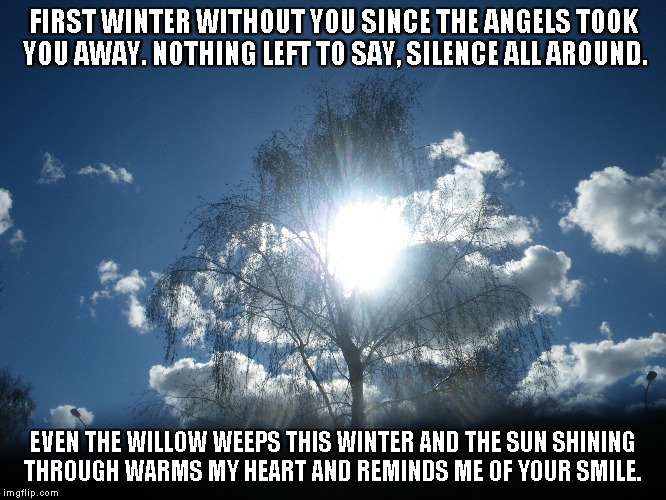 Weeping Willow | FIRST WINTER WITHOUT YOU SINCE THE ANGELS TOOK YOU AWAY. NOTHING LEFT TO SAY, SILENCE ALL AROUND. EVEN THE WILLOW WEEPS THIS WINTER AND THE  | image tagged in winter,angels,weeping willow,the sun,hearts,smiles | made w/ Imgflip meme maker