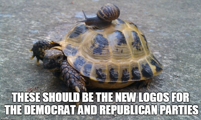 Snail riding turtle | THESE SHOULD BE THE NEW LOGOS FOR THE DEMOCRAT AND REPUBLICAN PARTIES | image tagged in snail riding turtle | made w/ Imgflip meme maker