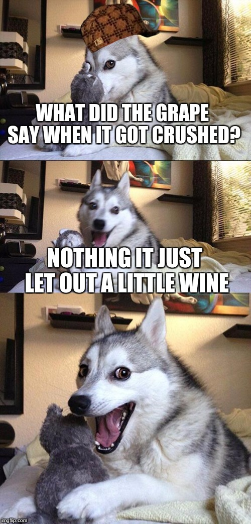 Bad Pun Dog Meme | WHAT DID THE GRAPE SAY WHEN IT GOT CRUSHED? NOTHING IT JUST LET OUT A LITTLE WINE | image tagged in memes,bad pun dog,scumbag | made w/ Imgflip meme maker