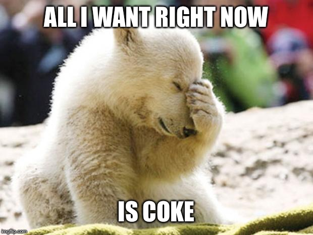 Sad Polar Bear | ALL I WANT RIGHT NOW IS COKE | image tagged in sad polar bear | made w/ Imgflip meme maker