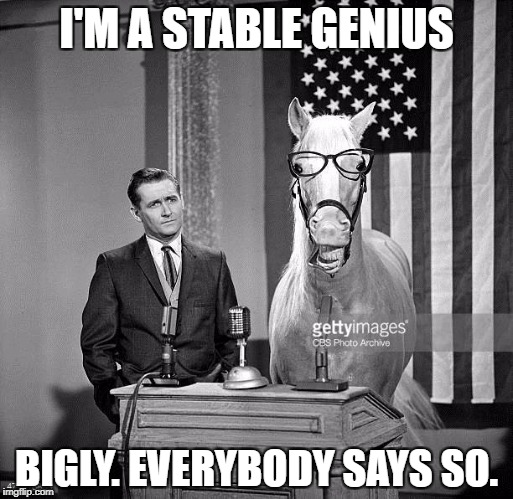 Stable Genius | I'M A STABLE GENIUS BIGLY. EVERYBODY SAYS SO. | image tagged in donald trump is an idiot,trump is a moron | made w/ Imgflip meme maker