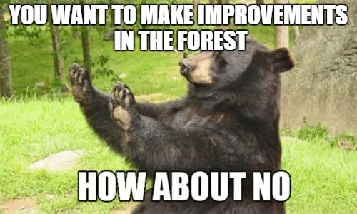 How About No Bear |  YOU WANT TO MAKE IMPROVEMENTS IN THE FOREST | image tagged in memes,how about no bear | made w/ Imgflip meme maker