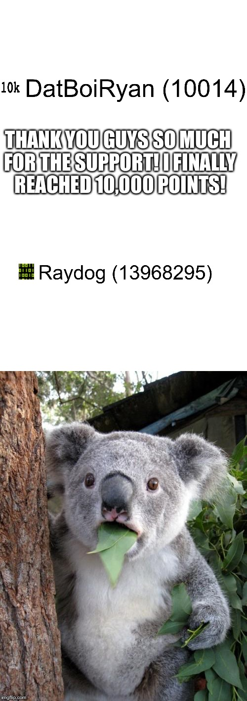 Thanks so much guys! But Raydog, wow. Just wow. | THANK YOU GUYS SO MUCH FOR THE SUPPORT! I FINALLY REACHED 10,000 POINTS! | image tagged in memes,raydog,surprised koala,goal,10k | made w/ Imgflip meme maker