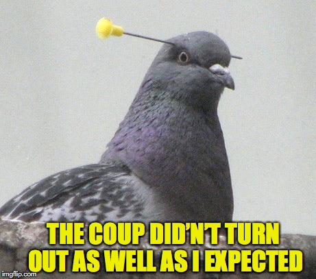 THE COUP DID'N'T TURN OUT AS WELL AS I EXPECTED | made w/ Imgflip meme maker