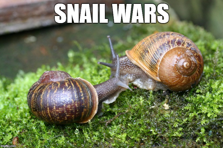 SNAIL WARS | made w/ Imgflip meme maker