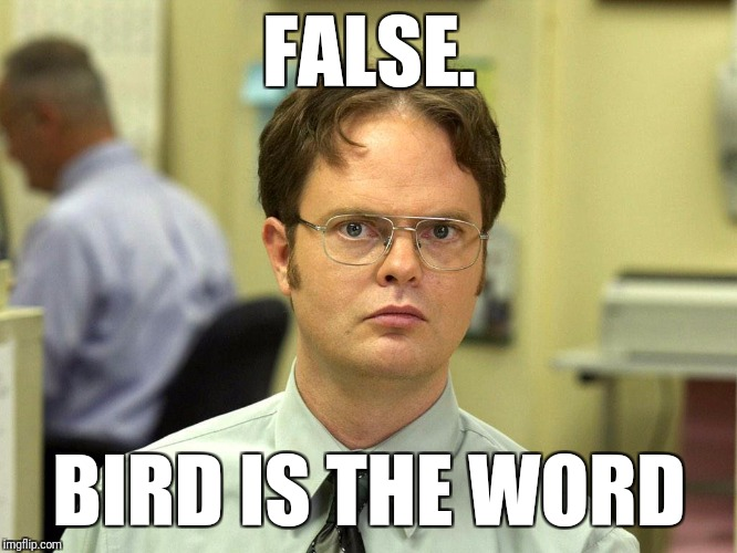 FALSE. BIRD IS THE WORD | image tagged in bird is the word | made w/ Imgflip meme maker