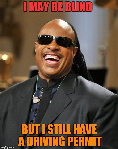 Stevie Wonder | I MAY BE BLIND BUT I STILL HAVE A DRIVING PERMIT | image tagged in stevie wonder | made w/ Imgflip meme maker