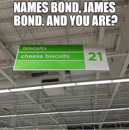Meet the new James Bond recruit. |  NAMES BOND, JAMES BOND. AND YOU ARE? | image tagged in hahaha | made w/ Imgflip meme maker