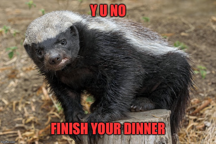 Y U NO FINISH YOUR DINNER | made w/ Imgflip meme maker