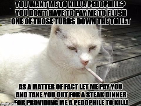 YOU WANT ME TO KILL A PEDOPHILE? YOU DON'T HAVE TO PAY ME TO FLUSH ONE OF THOSE TURDS DOWN THE TOILET AS A MATTER OF FACT LET ME PAY YOU AND | image tagged in hit man cat | made w/ Imgflip meme maker
