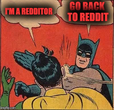 Batman Slapping Robin Meme | I'M A REDDITOR GO BACK TO REDDIT | image tagged in memes,batman slapping robin | made w/ Imgflip meme maker