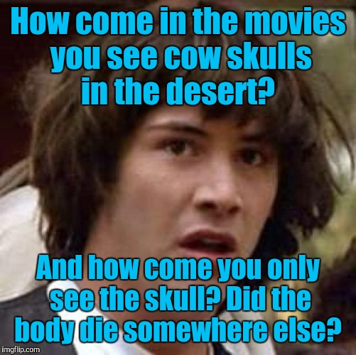 Conspiracy Keanu Meme | How come in the movies you see cow skulls in the desert? And how come you only see the skull? Did the body die somewhere else? | image tagged in memes,conspiracy keanu | made w/ Imgflip meme maker