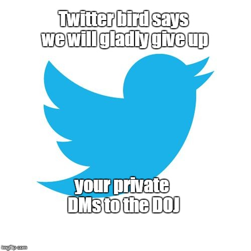 Twitter birds says | Twitter bird says we will gladly give up your private DMs to the DOJ | image tagged in twitter birds says | made w/ Imgflip meme maker