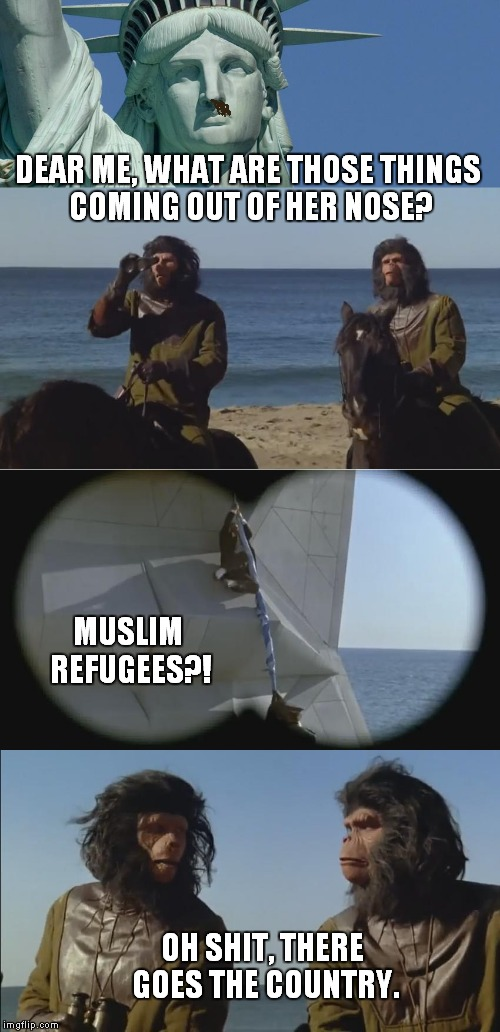 Planet Of The Apes | DEAR ME, WHAT ARE THOSE THINGS COMING OUT OF HER NOSE? OH SHIT, THERE GOES THE COUNTRY. MUSLIM REFUGEES?! | image tagged in spaceballs,planet of the apes,parody,muslim,refugee,meme | made w/ Imgflip meme maker