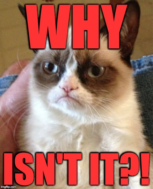 Grumpy Cat Meme | WHY ISN'T IT?! | image tagged in memes,grumpy cat | made w/ Imgflip meme maker