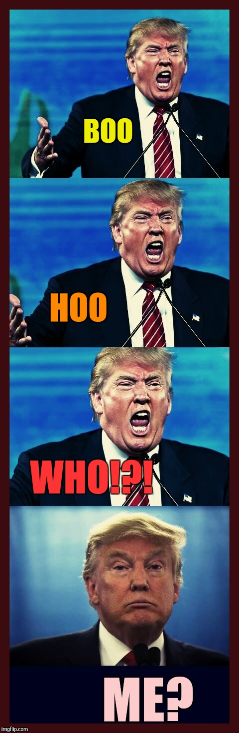 Trump triggered! Triggered! TRIGGERED! Tarded! | BOO ME? HOO WHO!?! | image tagged in trump triggered triggered triggered tarded | made w/ Imgflip meme maker