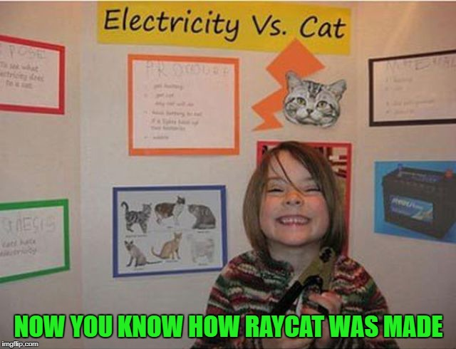 Now that's a science project!!! Geek Week, Jan 7-13, a JBmemegeek & KenJ event! Submit anything and everything geek! | NOW YOU KNOW HOW RAYCAT WAS MADE | image tagged in electricity vs cat,memes,science project,funny,geek week,raycat | made w/ Imgflip meme maker