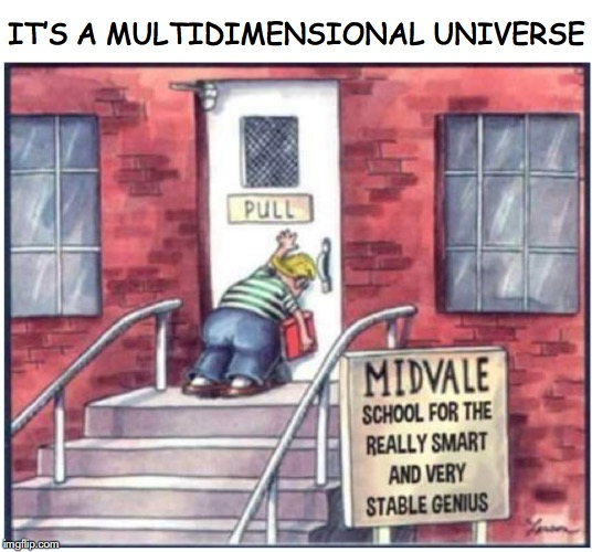 IT'S A MULTIDIMENSIONAL UNIVERSE | image tagged in funny meme,cartoons,genius | made w/ Imgflip meme maker