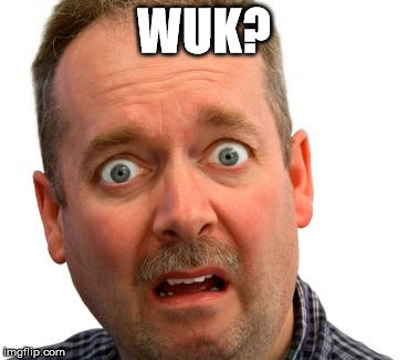 Wuk? | WUK? | image tagged in what do you mean,wuk | made w/ Imgflip meme maker