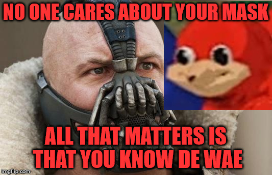 Knowing De Wae is more important. | NO ONE CARES ABOUT YOUR MASK ALL THAT MATTERS IS THAT YOU KNOW DE WAE | image tagged in ugandan knuckles | made w/ Imgflip meme maker