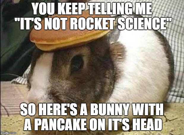 "YOU KEEP TELLING ME ""IT'S NOT ROCKET SCIENCE"" SO HERE'S A BUNNY WITH A PANCAKE ON IT'S HEAD 