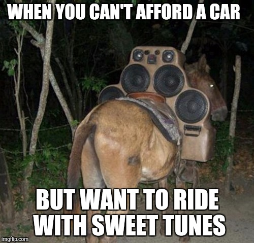 WHEN YOU CAN'T AFFORD A CAR BUT WANT TO RIDE WITH SWEET TUNES | image tagged in boom donkey | made w/ Imgflip meme maker