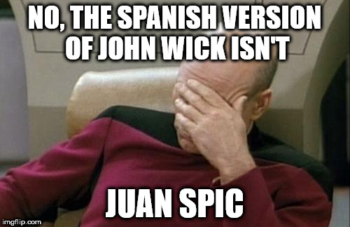 Captain Picard Facepalm Meme | NO, THE SPANISH VERSION OF JOHN WICK ISN'T JUAN SPIC | image tagged in memes,captain picard facepalm | made w/ Imgflip meme maker
