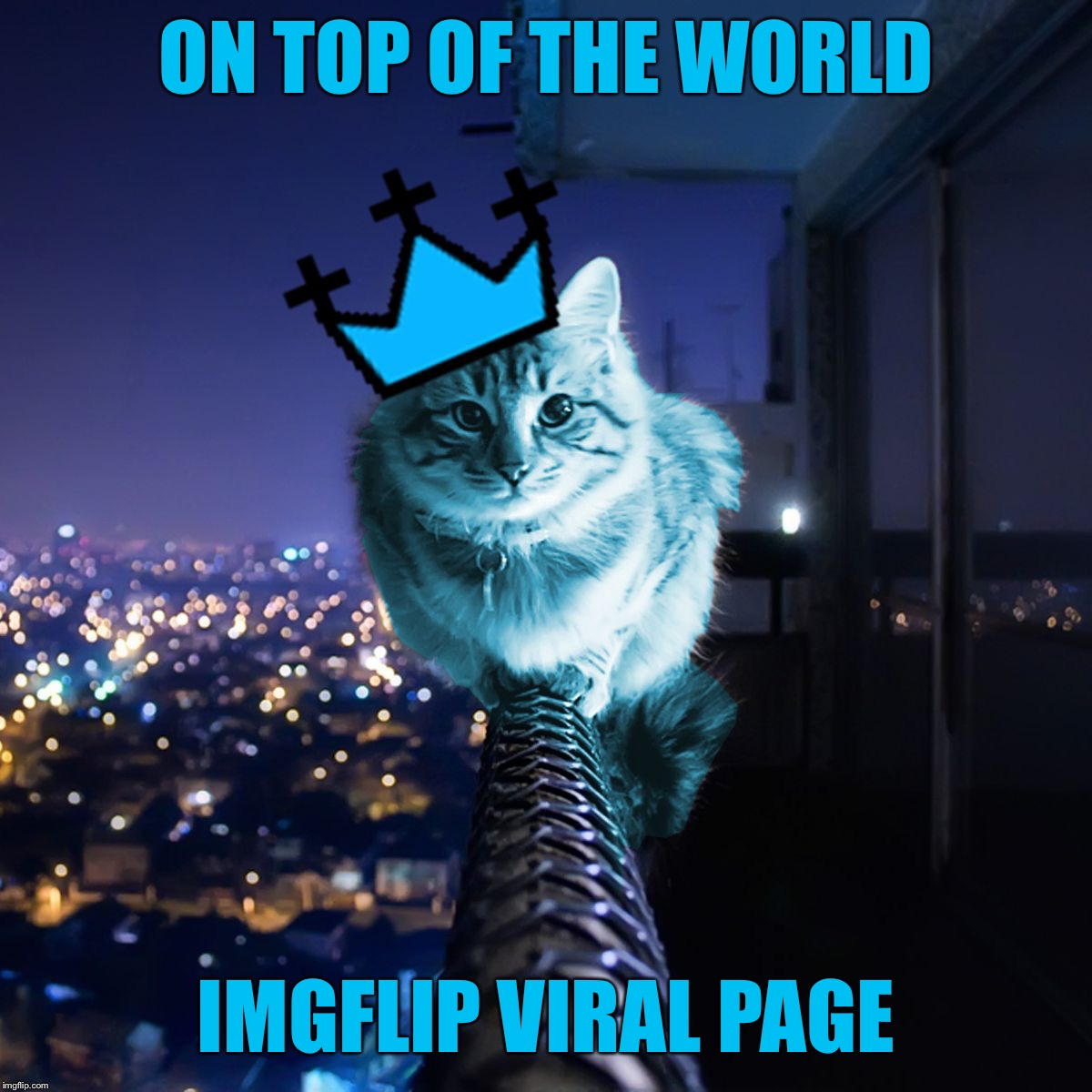 ON TOP OF THE WORLD IMGFLIP VIRAL PAGE | image tagged in raycat wears the crown,memes | made w/ Imgflip meme maker