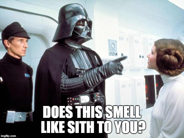 Darth Vader | DOES THIS SMELL LIKE SITH TO YOU? | image tagged in darth vader | made w/ Imgflip meme maker