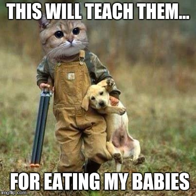 THIS WILL TEACH THEM... FOR EATING MY BABIES | image tagged in let's go | made w/ Imgflip meme maker