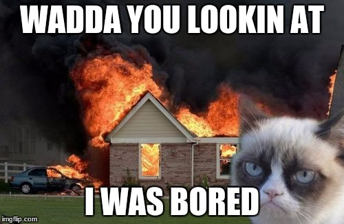 Burn Kitty Meme | WADDA YOU LOOKIN AT I WAS BORED | image tagged in memes,burn kitty,grumpy cat | made w/ Imgflip meme maker